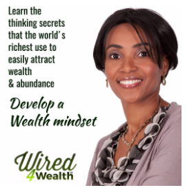 Wealth Mindset 101